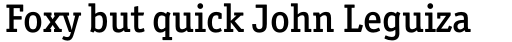 Officina Serif Pro Medium sample