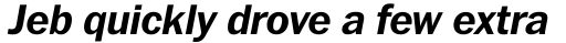 Franklin Pro Bold Italic sample