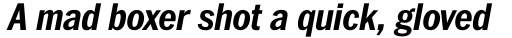 Franklin Pro Narrow Bold Italic sample