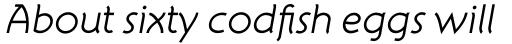 Atelier Sans Std Book Italic sample