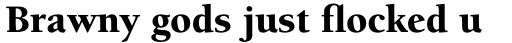 ITC Berkeley Old Style Pro Black sample
