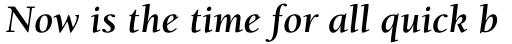 ITC Berkeley Old Style Pro Bold Italic sample