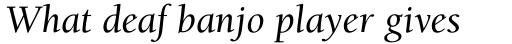 ITC Berkeley Old Style Pro Medium Italic sample