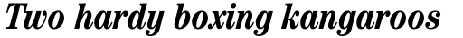 ITC Century Std Cond Bold Italic sample