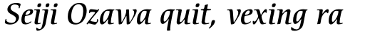 ITC Cerigo Std Medium Italic sample