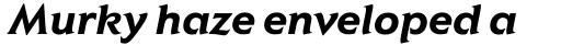 Elan Std Bold Italic sample