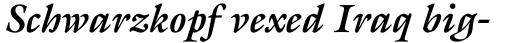 ITC Galliard Pro Bold Italic sample