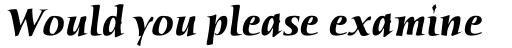 Humana Std Bold Italic sample