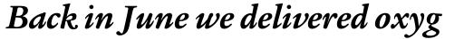 Legacy Serif Pro Bold Italic sample