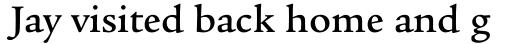 Legacy Serif Pro Medium sample