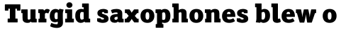 Officina Serif Std Black sample