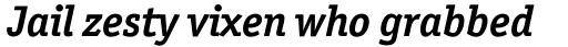 Officina Serif Std Bold Italic sample