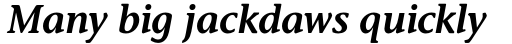 Stone Informal Std SemiBold Italic sample