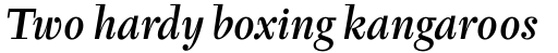 Tyfa Pro Medium Italic sample