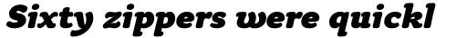 Tyke Std Black Italic sample