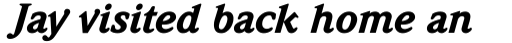 Weidemann Std Black Italic sample