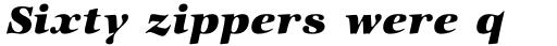 ITC Zapf International Std Heavy Italic sample