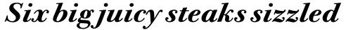 Bodoni Twelve Pro Bold Italic sample