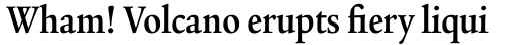 Legacy Serif Pro Bold Condensed sample