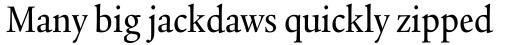 Legacy Serif Pro Medium Condensed sample