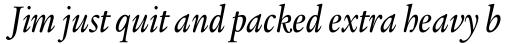 Legacy Serif Pro Medium Condensed Italic sample