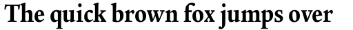 Legacy Serif Pro Ultra Condensed sample