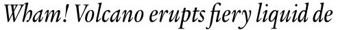 Legacy Serif Std Medium Condensed Italic sample