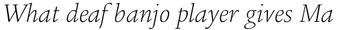 Legacy Square Serif Pro ExtraLight Italic sample