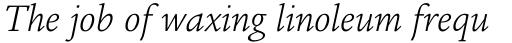 Legacy Square Serif Pro Light Italic sample