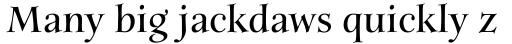 Anima Bold sample