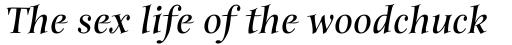 Anima Bold Italic sample