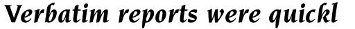 Novarese Pro Bold Italic sample