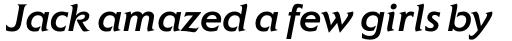 Elan Pro Medium Italic sample