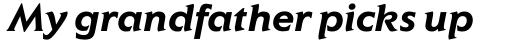 Elan Pro Bold Italic sample
