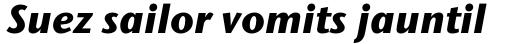 Stone Humanist Pro Bold Italic sample