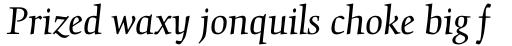Gilgamesh Pro Book Italic sample