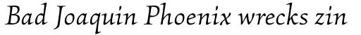 Kallos Pro Book Italic sample