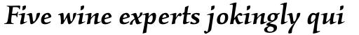 Kallos Pro Medium Italic sample