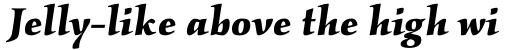 Kallos Pro Bold Italic sample