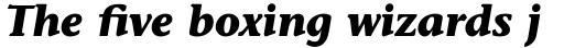 Stone Informal Pro Bold Italic sample