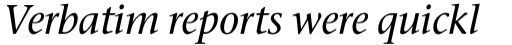 Stone Serif Pro Medium Italic sample