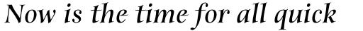 Anima Std Bold Italic sample