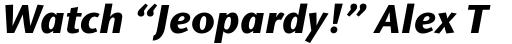 Stone Sans Pro Bold Italic sample