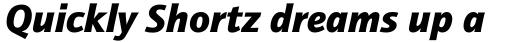 ITC Quay Sans Pro Black Italic sample