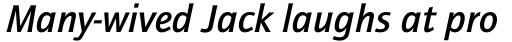ITC Quay Sans Com Medium Italic sample