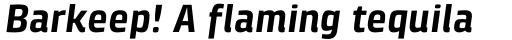 Klint Std Bold Italic sample