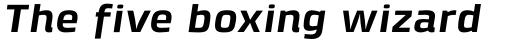 Klint Std Bold Extended Italic sample