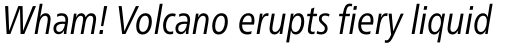 Neue Frutiger Pro Condensed Book Italic sample