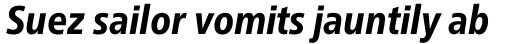 Neue Frutiger Pro Condensed Heavy Italic sample
