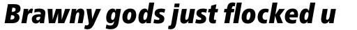 Neue Frutiger Pro Condensed ExtraBlack Italic sample